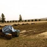 Harvest Moon Farm in Greenfield
